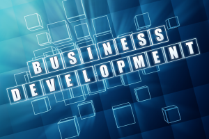 【英語必須※1500万円】Business Development Executive